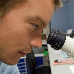 I+D Investigación y Desarrollo, siempre innovando para ofrecerte la mejor calidad.
